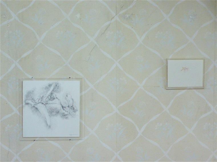 Alternence dans l'accrochage de  dessins à l'encre de D.Dessus et de 8 dessins de la série