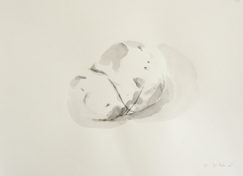 Détail d'un dessin du 30 juillet 2005. Encre sur papier. 21 x 29,7 cm.