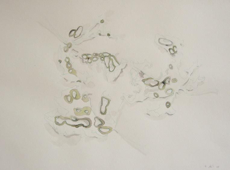 Détail d'un dessin du 9 août 2005. Crayon de couleur et encre sur papier. 29,7 x 42 cm.